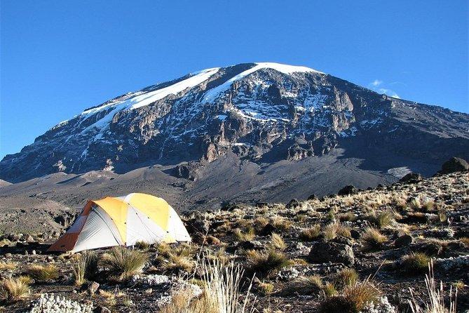 Kilimanjaro 6-Days Private Trekking Tour via Machame Route