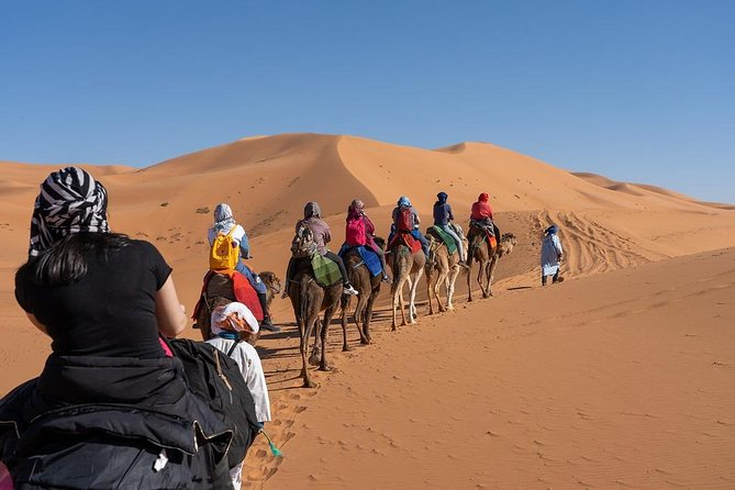 3 Day Marrakech to Fes desert Tour - Camel Trek
