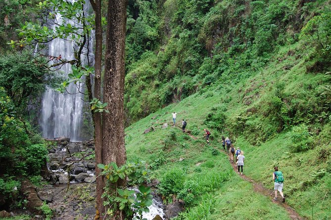 Materuni Waterfalls, Coffee & Cultural Tour Day trip photo 7