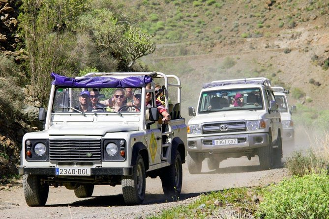 Jeep Tour in Gran Canaria with Optional Camel Ride
