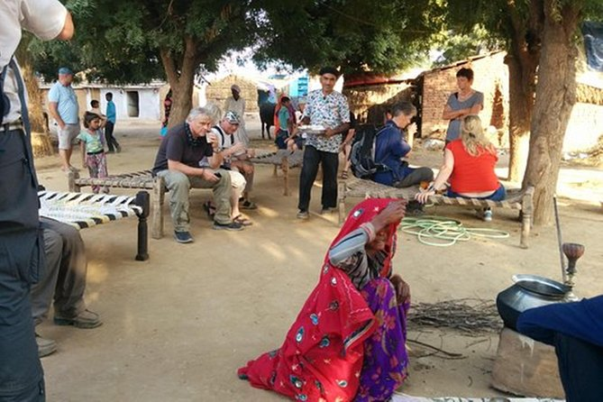 Kalakho Village Day Tour Including Rajasthani Traditional Lunch with Host Family