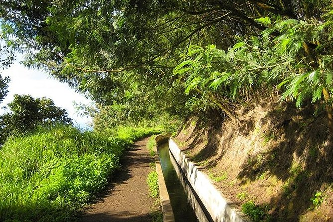 Levada do Norte Walk photo 6