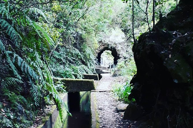Levada do Norte Walk photo 2