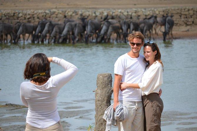 4 Days to Ruaha National Park from Dar es salaam/ Morogoro/ Dodoma Tanzania