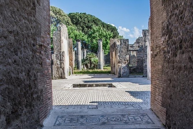 From Sorrento Coast - Pompeii drive tour with official Archaelogical Guide -