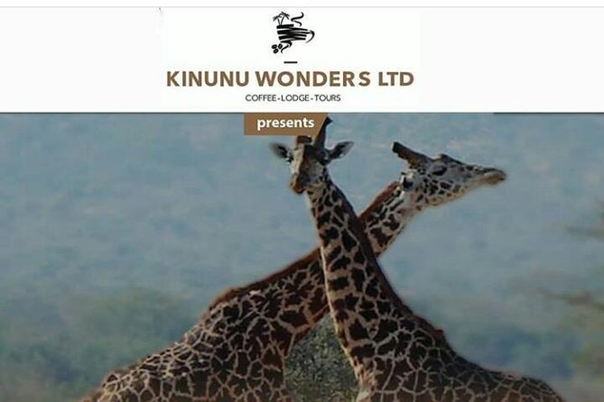 Kinunu Wonders Tourism Packages photo 1