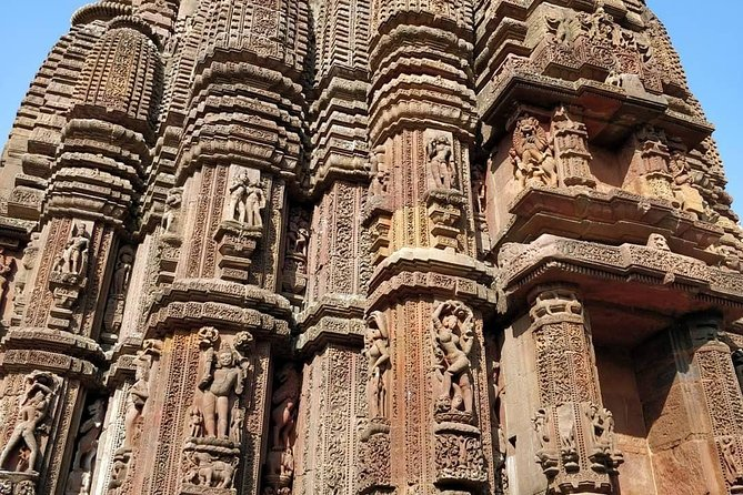 Full Day Bhubaneswar Local Sightseeing Tour photo 3