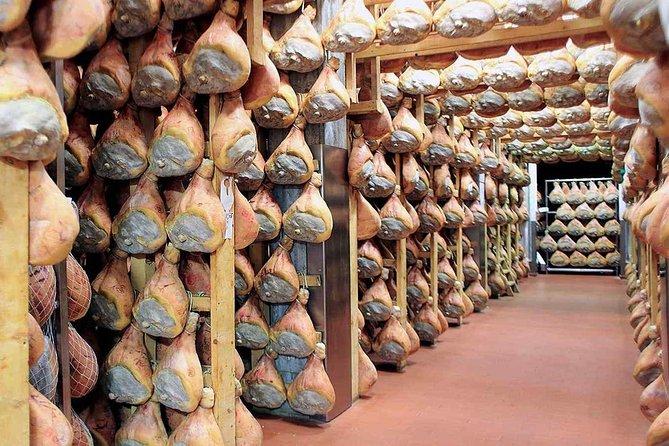 Shore Excursion from La Spezia to Parmesan Cheese, Ham & Balsamic Vinegar - Tour
