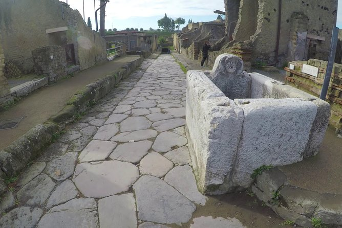 Herculaneum, Wines, food - private experience FROM NAPLES ALL INCLUSIVE