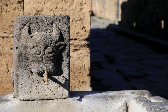 Private Half-Day Tour of The Pompeii Ruins Highlights and Mann