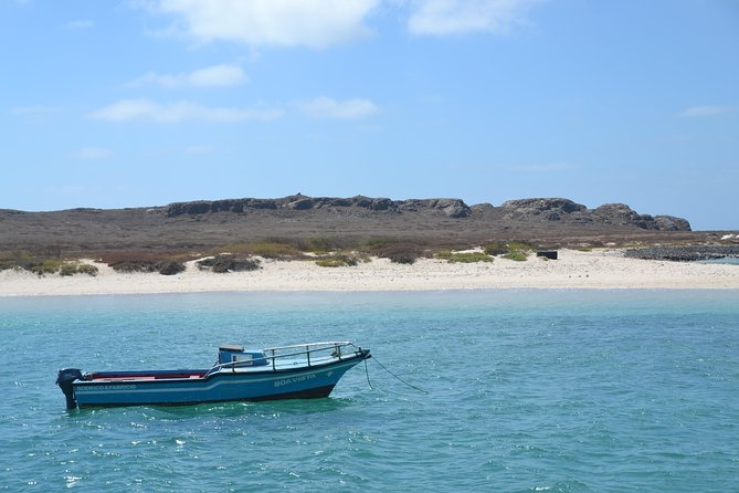 Boa Vista: Catamaran Sailing Trip photo 4