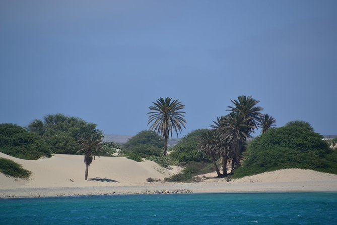 Boa Vista: Catamaran Sailing Trip photo 2