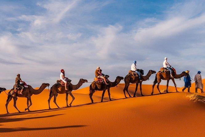 1 night camel trekking in Merzouga