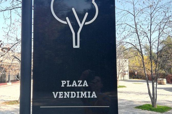 Viña Concha y Toro Classic Tour leaving from Santiago (half day)