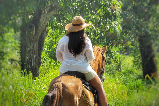 Discover the nature horseback riding in natural reserve