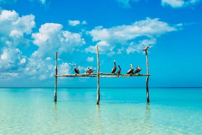 Holbox Magic Island Tour
