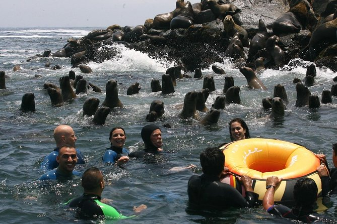 Morning: Palomino Island tour