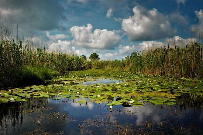 One Day Guided Private Tour to Danube Delta from Bucharest
