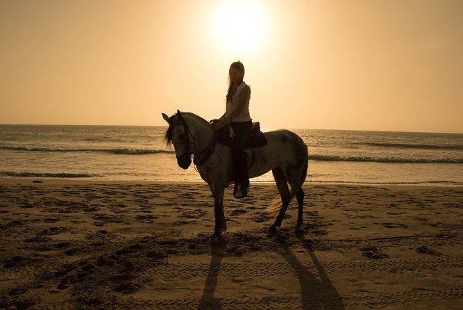 3-Day Trip from Cartagena with Horse Riding, Snorkeling and Photography
