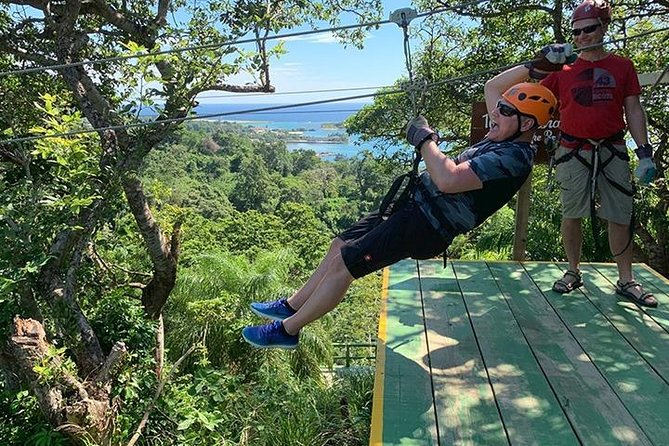 Extreme Zipline, FREE Sloth & Monkey, Beach & Private Transportation