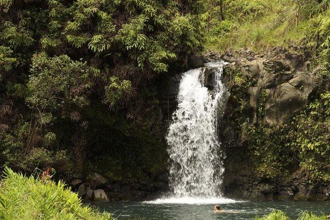 Waterfall and Rainforest Adventure