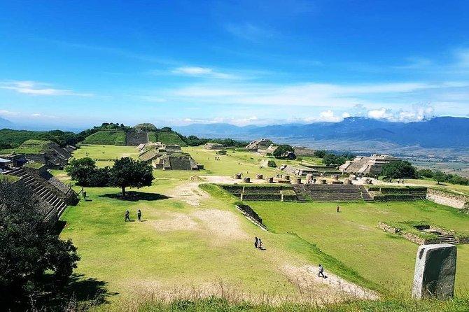 Oaxaca Conmigo Tours