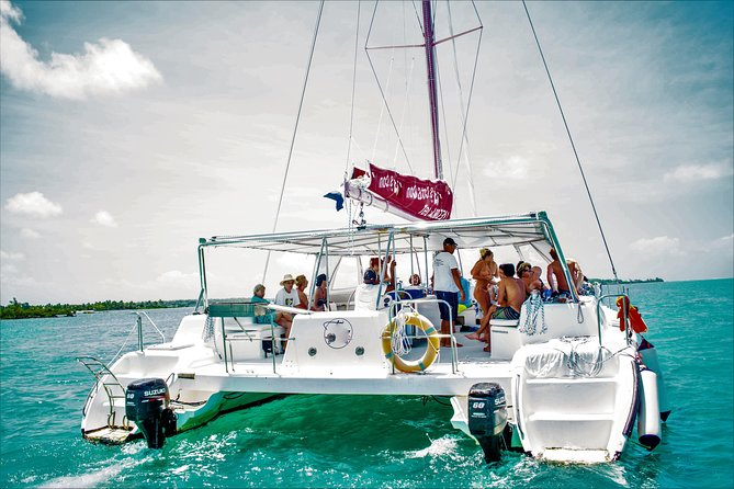 Catamaran Cruise to Ile aux Cerfs + GRSE Waterfall, BBQ Lunch & Drinks