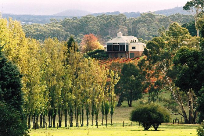 Adelaide Hills Wine Tour