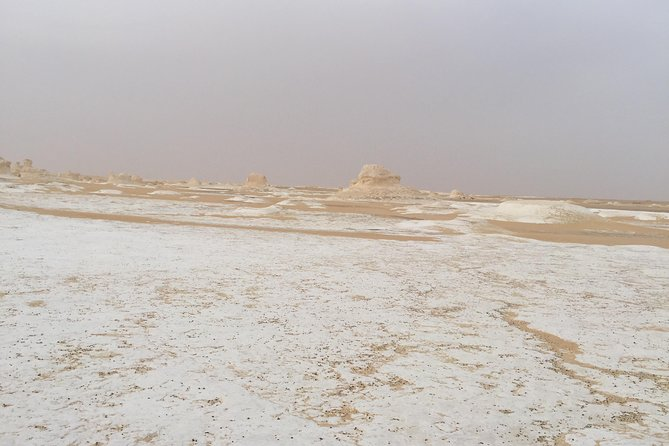 2-Days Tour To Bahariya Oasis and White desert from Cairo photo 3