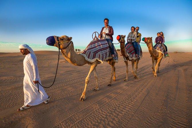 Camel Trekking Safari
