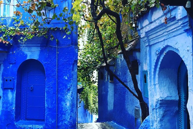 Chefchaouen Full day trip From Fez - Private transportation