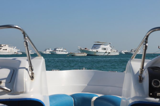 4 Hours Snorkeling With the Dolphins by a Speed Boat (Private) - Hurghada photo 17