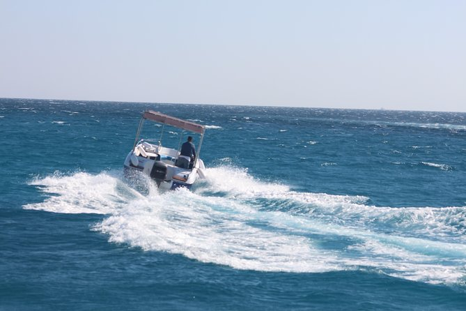4 Hours Snorkeling With the Dolphins by a Speed Boat (Private) - Hurghada photo 12
