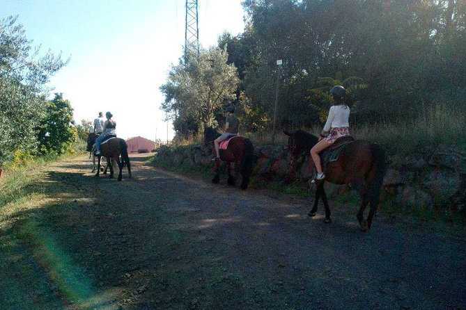 Horseback Riding Tour of Sicilian Countyside