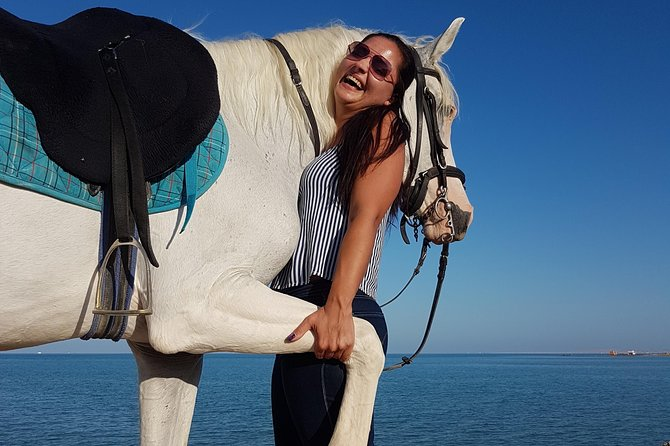 Two Hours Horse or Camel Riding - Hurghada