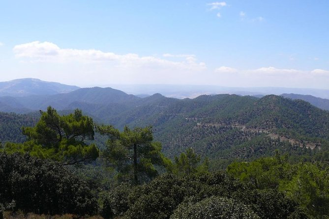 Escooter & walk exploration combo - Paphos Forest - Cedar Valley - from Nicosia