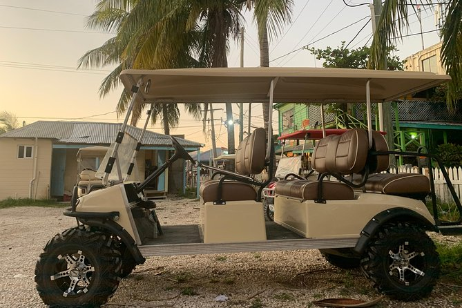 C&S 6 Seater Golf Cart Rental
