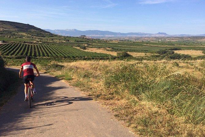 Rioja Bike & Wine, including 2 winery visits with wine tastings
