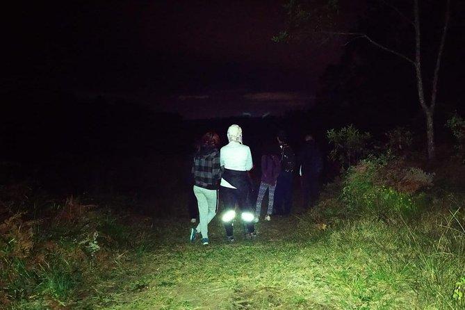 Night experience