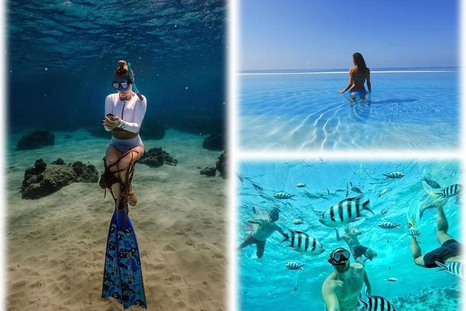 Snorkeling at Mahmya Island from Hurghada photo 3