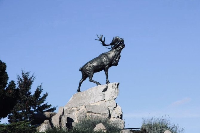 Newfoundland Memorial-Round Trip Transfer from Arras to Beaumont-Hamel