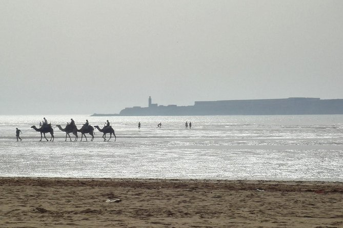 Essaouira Private 1 Day Excursion from Marrakech (min. 2 paying persons) photo 6