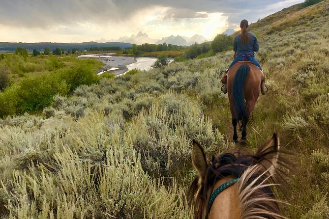 Yellowstone National Park Horseback Ride
