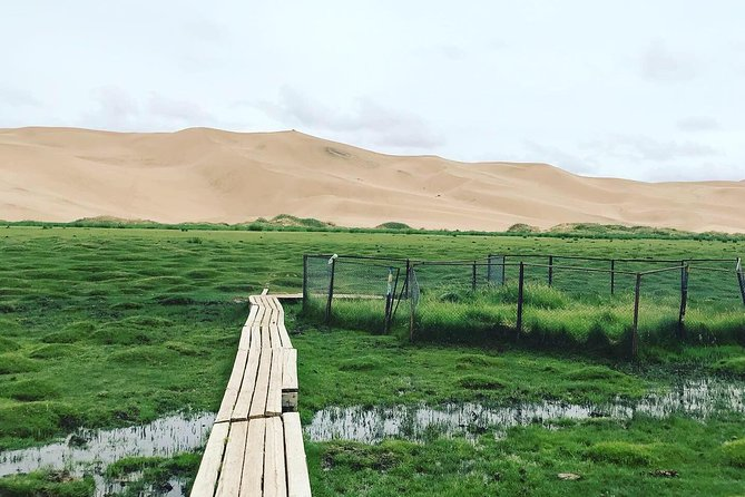 South Gobi Top Trip photo 6
