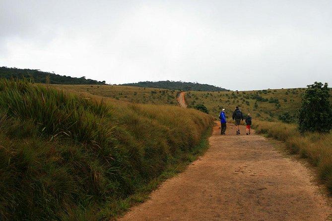 Hortan Plains Tour From Kandy
