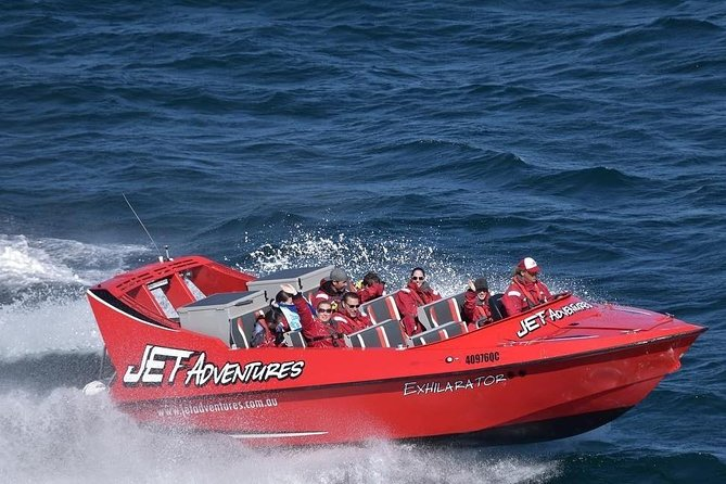 Jet Adventures & Harvest Tours Wilderness Whale Watching Experience