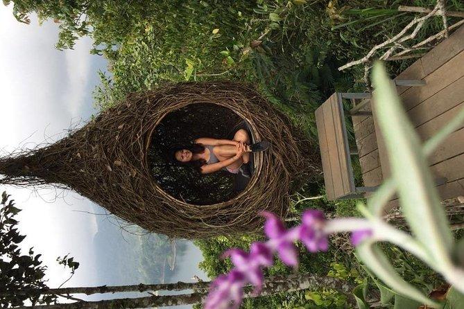 Instagram Tour: Best of Bali