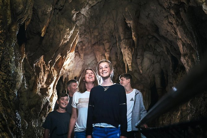 Waitomo Caves Full Day Trip with Option to Add Hobbiton from Auckland