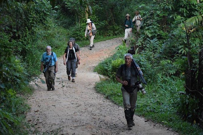 Private Day Tour: Sinharaja Rainforest Bird Hike Tour photo 3