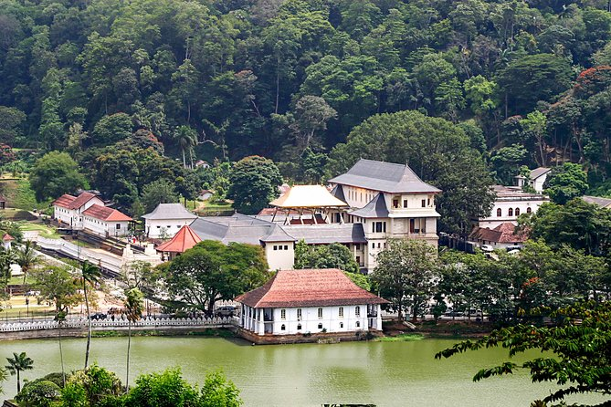 Kandy City Walk with a Local